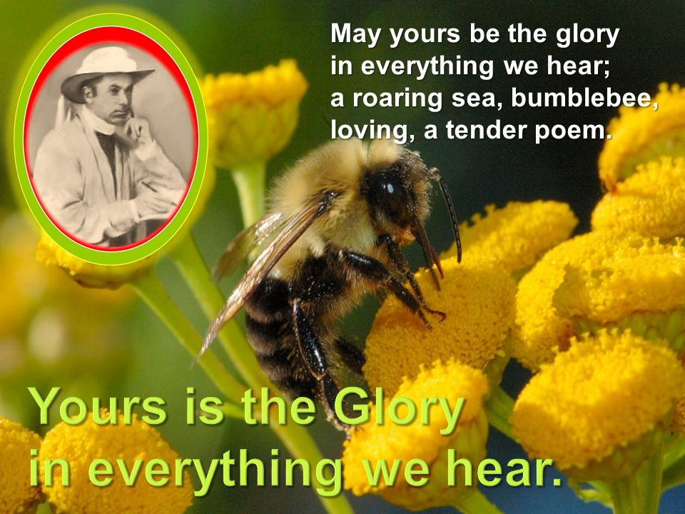 May yours be the glory in everything we hear; a roaring sea, bumblebee, loving, a tender poem.