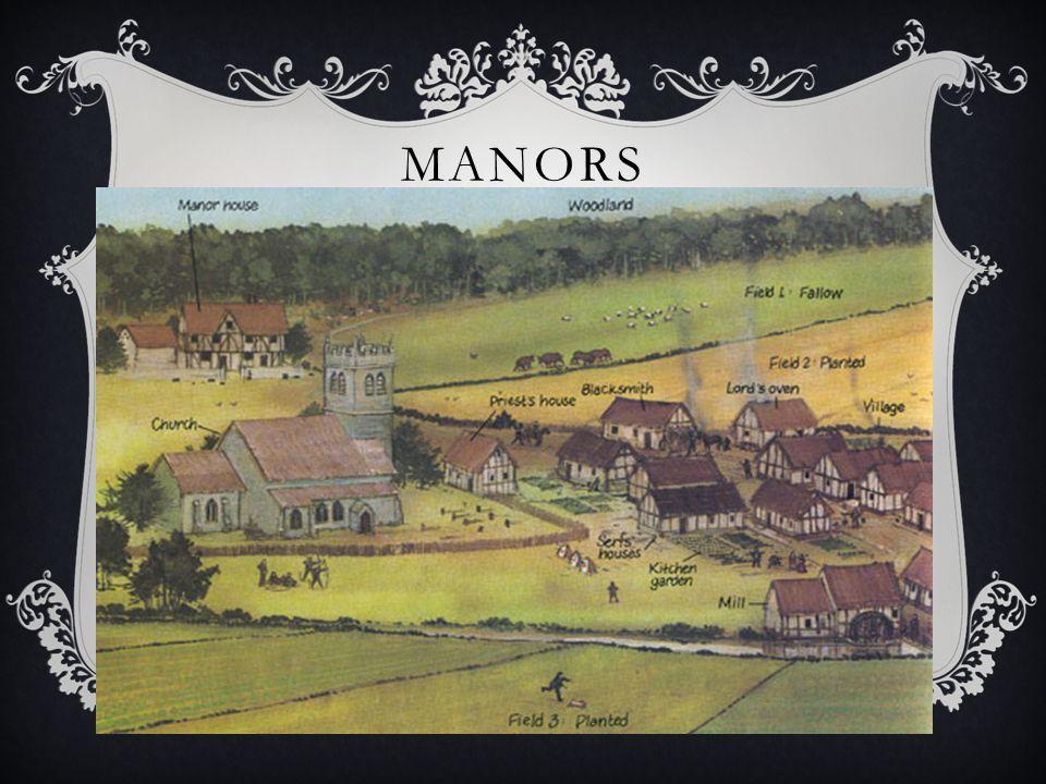 MANORS