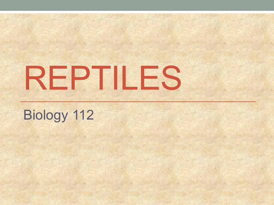 REPTILES Biology 112