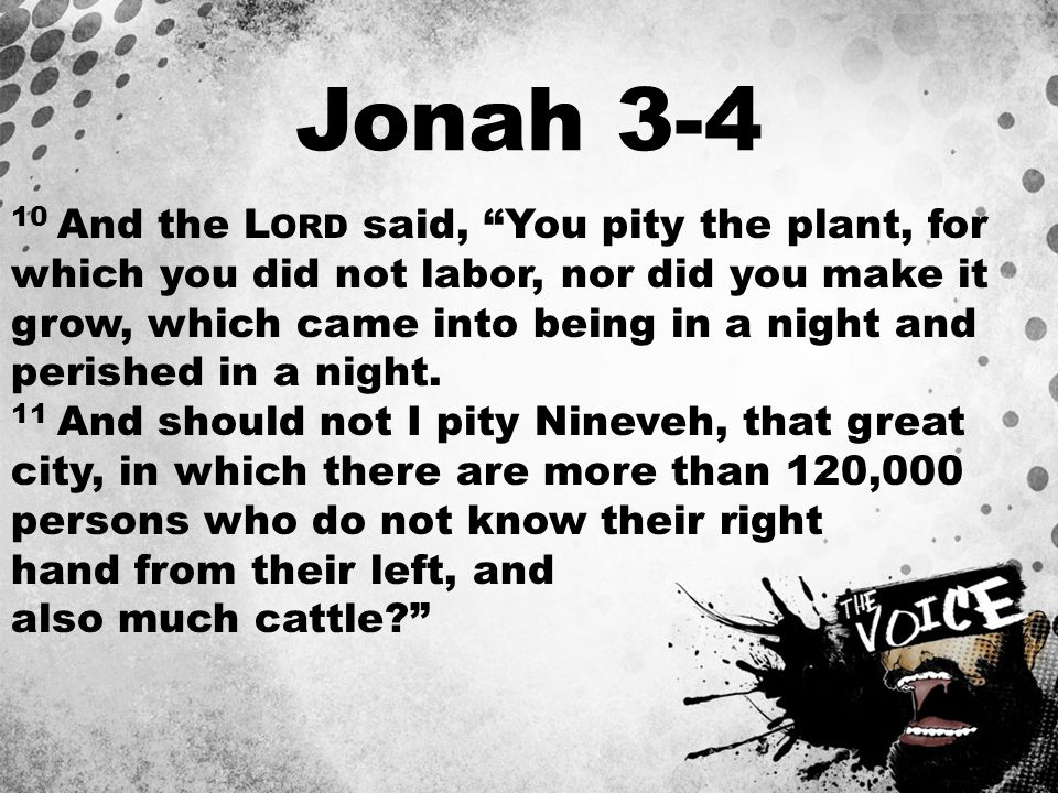 """Jonah 3-4 10 And the L ORD said, """"You pity the plant, for which you did not labor, nor did you make it grow, which came into being in a night and peri"""