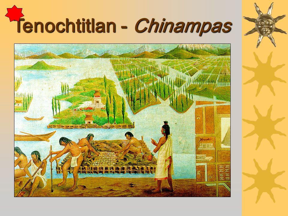 Tenochtitlan - Chinampas