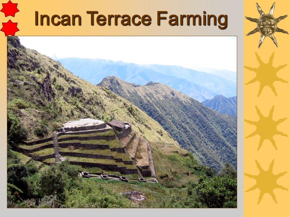 Incan Terrace Farming