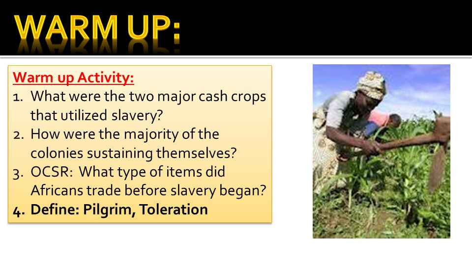 Warm up Activity: 1.What were the two major cash crops that utilized slavery.