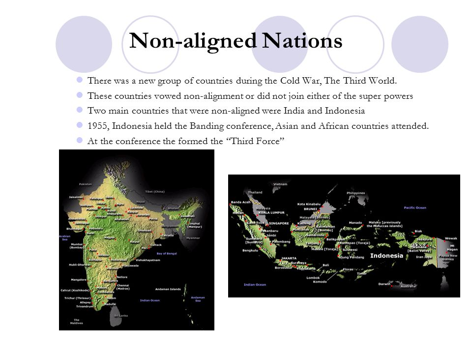 Non-aligned Nations There was a new group of countries during the Cold War, The Third World.