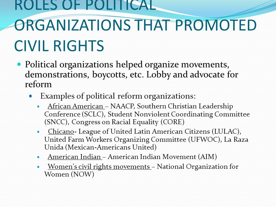 ROLES OF POLITICAL ORGANIZATIONS THAT PROMOTED CIVIL RIGHTS Political organizations helped organize movements, demonstrations, boycotts, etc.
