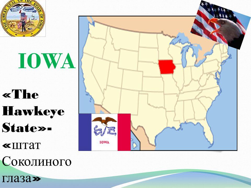 IOWA «The Hawkeye State»- « штат Соколиного глаза »