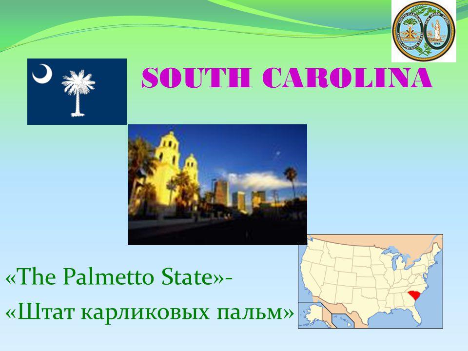 SOUTH CAROLINA «The Palmetto State»- «Штат карликовых пальм»