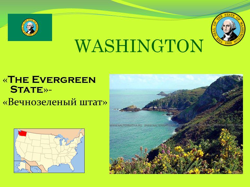 WASHINGTON « The Evergreen State »- «Вечнозеленый штат»
