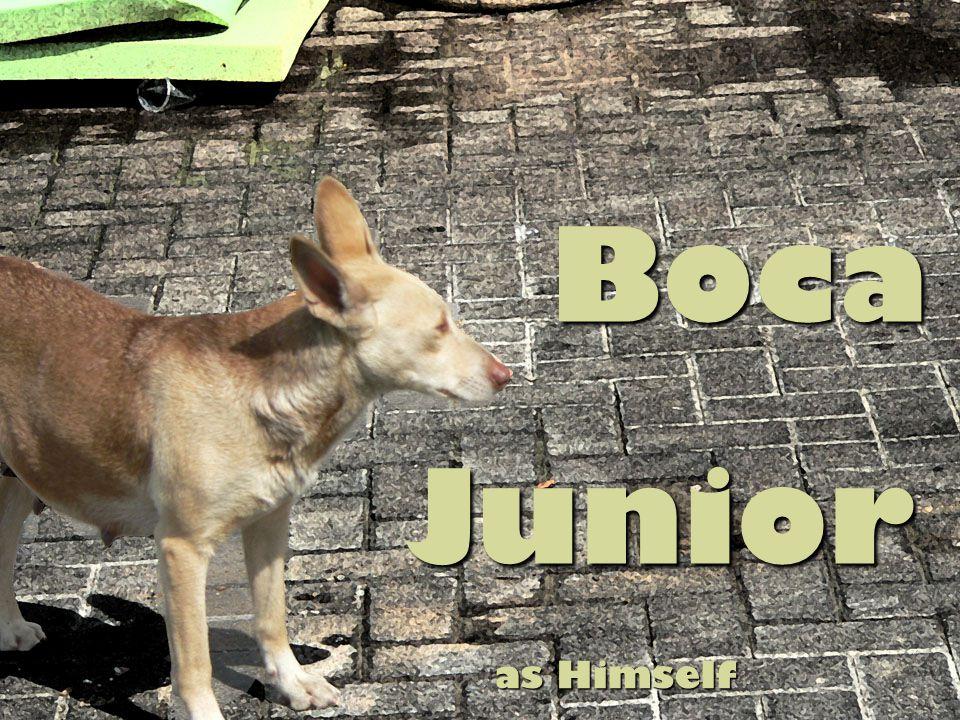 Boca Junior Junior as Himself