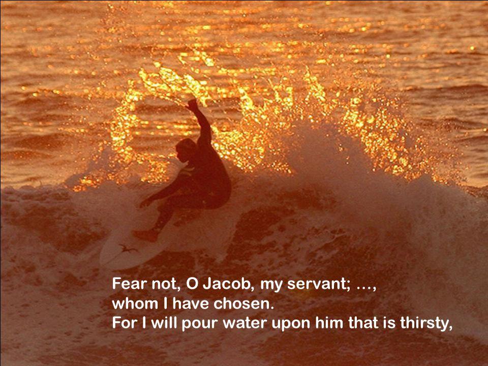 Fear not, O Jacob, my servant; …, whom I have chosen.