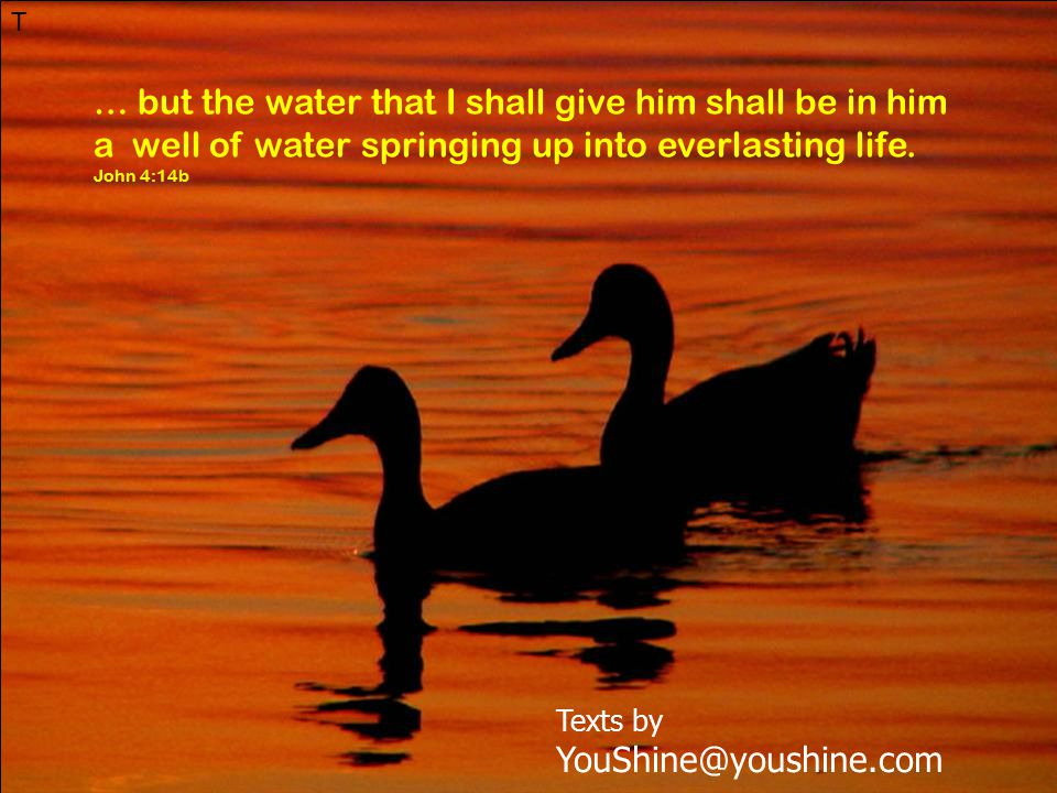 T … but the water that I shall give him shall be in him a well of water springing up into everlasting life.