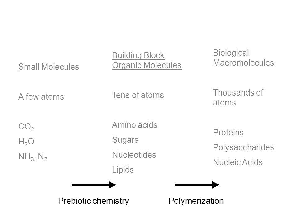 Small Molecules A few atoms CO 2 H 2 O NH 3, N 2 Building Block Organic Molecules Tens of atoms Amino acids Sugars Nucleotides Lipids Biological Macro