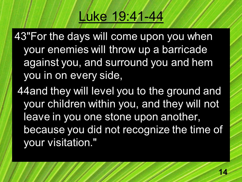 14 Luke 19:41-44 43 For the days will come upon you when your enemies will throw up a barricade against you, and surround you and hem you in on every side, 44and they will level you to the ground and your children within you, and they will not leave in you one stone upon another, because you did not recognize the time of your visitation.
