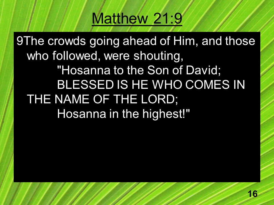16 Matthew 21:9 9The crowds going ahead of Him, and those who followed, were shouting, Hosanna to the Son of David; BLESSED IS HE WHO COMES IN THE NAME OF THE LORD; Hosanna in the highest!