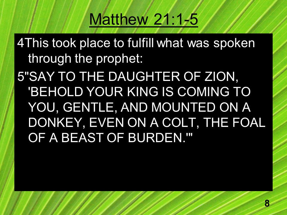 8 Matthew 21:1-5 4This took place to fulfill what was spoken through the prophet: 5 SAY TO THE DAUGHTER OF ZION, BEHOLD YOUR KING IS COMING TO YOU, GENTLE, AND MOUNTED ON A DONKEY, EVEN ON A COLT, THE FOAL OF A BEAST OF BURDEN.