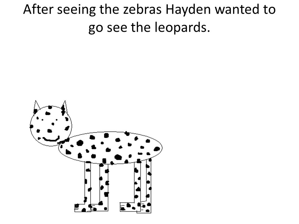After seeing the zebras Hayden wanted to go see the leopards.