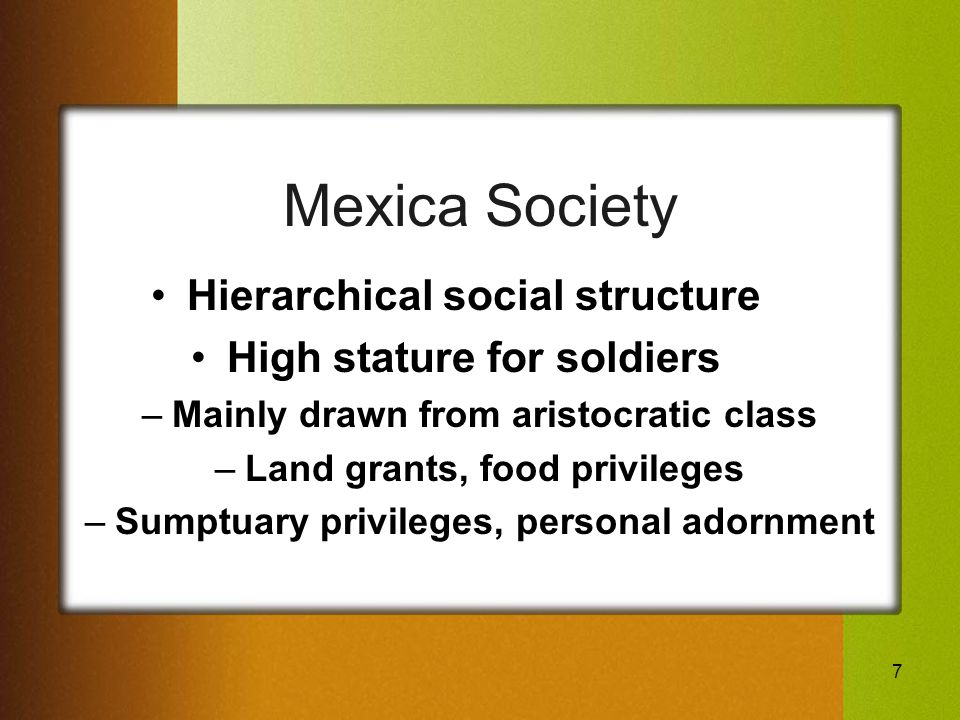 7 Mexica Society Hierarchical social structure High stature for soldiers –Mainly drawn from aristocratic class –Land grants, food privileges –Sumptuary privileges, personal adornment