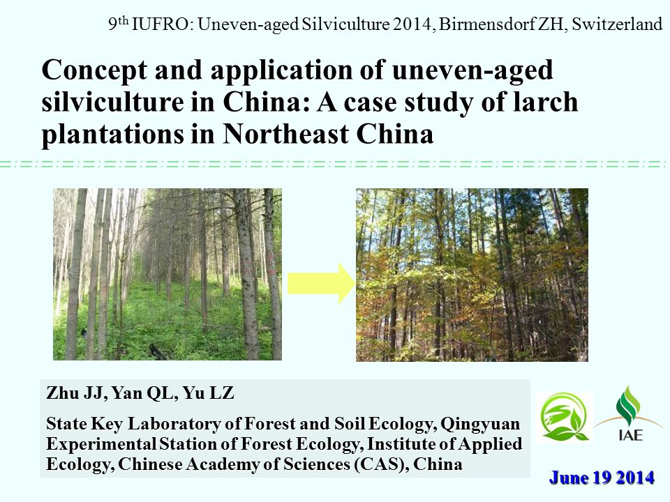 Concept and application of uneven-aged silviculture in China: A case study of larch plantations in Northeast China 9 th IUFRO: Uneven-aged Silviculture 2014, Birmensdorf ZH, Switzerland Zhu JJ, Yan QL, Yu LZ State Key Laboratory of Forest and Soil Ecology, Qingyuan Experimental Station of Forest Ecology, Institute of Applied Ecology, Chinese Academy of Sciences (CAS), China June 19 2014