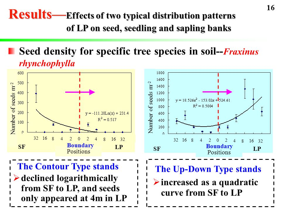 Seed density for specific tree species in soil-- Fraxinus rhynchophylla SF 3216 84202 4 8 32 LP SFLP 3216 84202 4 8 32 The Contour Type stands  declined logarithmically from SF to LP, and seeds only appeared at 4m in LP The Up-Down Type stands  increased as a quadratic curve from SF to LP Positions Number of seeds m -2 Positions Number of seeds m -2 16 Results— Effects of two typical distribution patterns of LP on seed, seedling and sapling banks Boundary