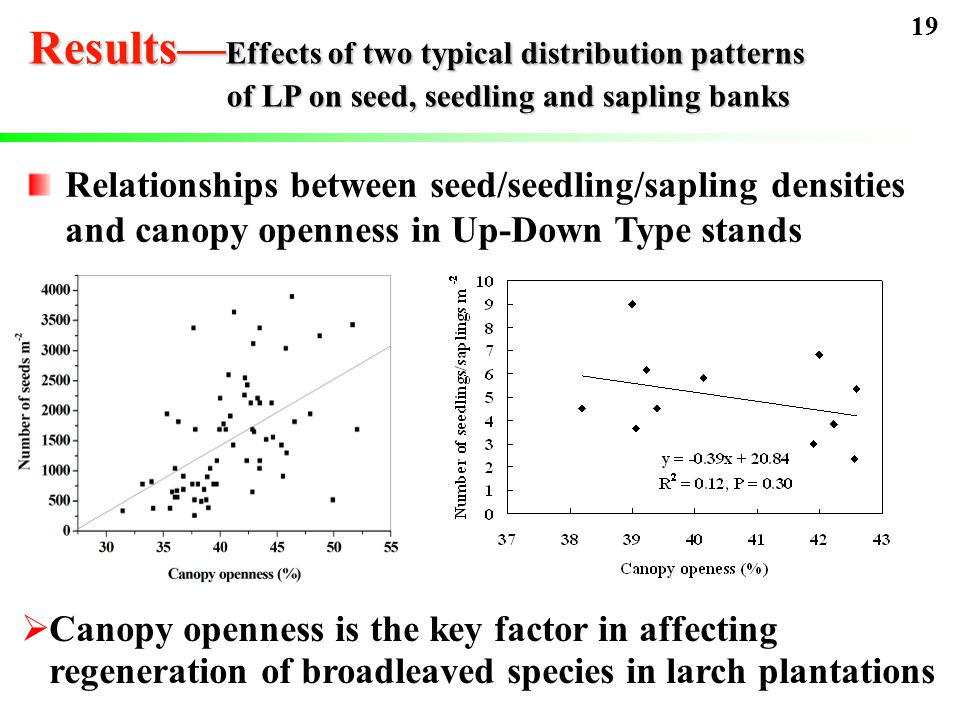 Relationships between seed/seedling/sapling densities and canopy openness in Up-Down Type stands  Canopy openness is the key factor in affecting regeneration of broadleaved species in larch plantations 19 Results— Effects of two typical distribution patterns of LP on seed, seedling and sapling banks