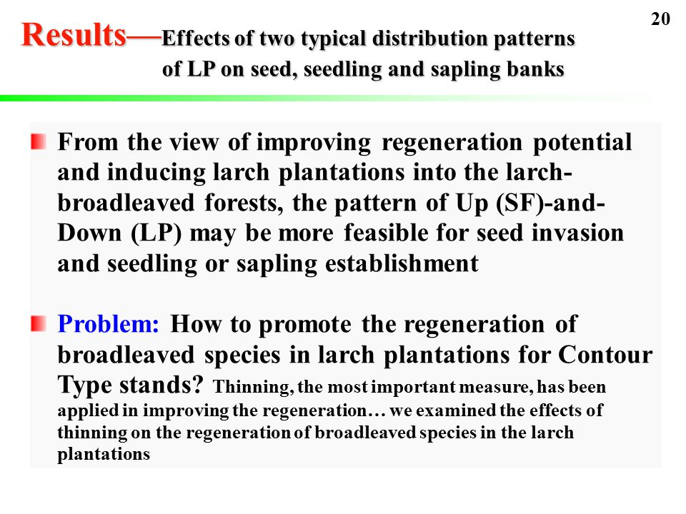 From the view of improving regeneration potential and inducing larch plantations into the larch- broadleaved forests, the pattern of Up (SF)-and- Down (LP) may be more feasible for seed invasion and seedling or sapling establishment Problem: How to promote the regeneration of broadleaved species in larch plantations for Contour Type stands.