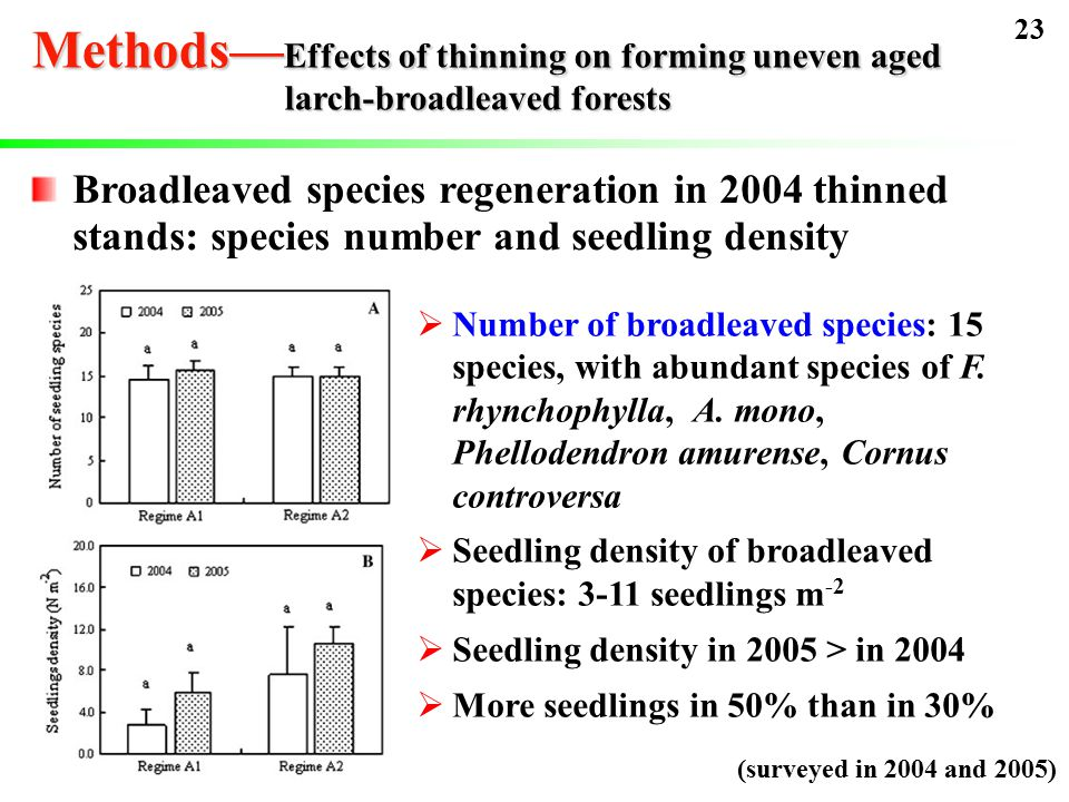Broadleaved species regeneration in 2004 thinned stands: species number and seedling density  Number of broadleaved species: 15 species, with abundant species of F.