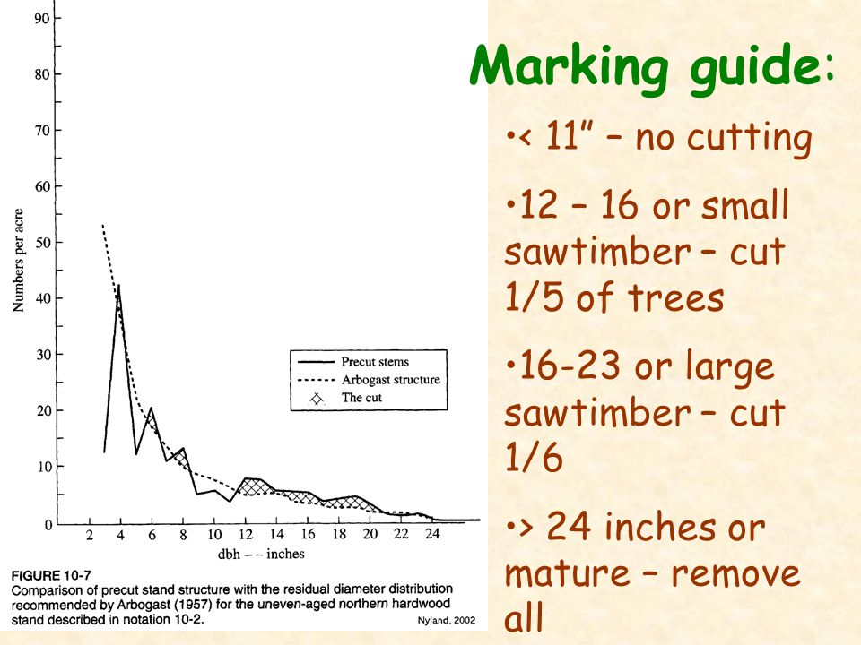 Marking guide: < 11 – no cutting 12 – 16 or small sawtimber – cut 1/5 of trees 16-23 or large sawtimber – cut 1/6 > 24 inches or mature – remove all