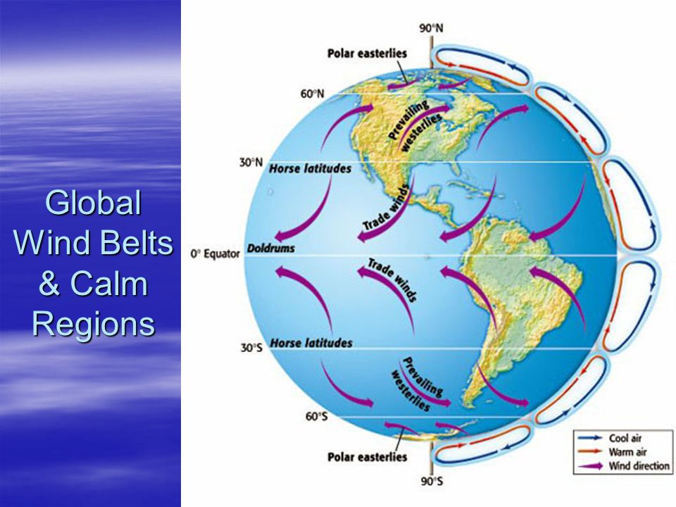 Global Wind Belts & Calm Regions