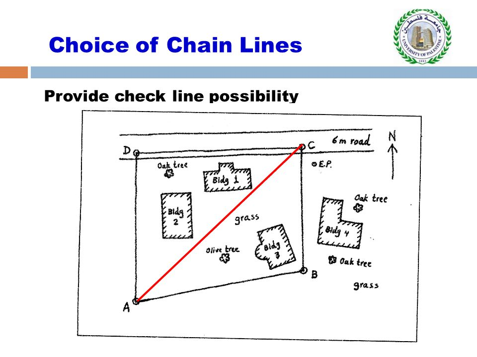 Provide check line possibility Choice of Chain Lines