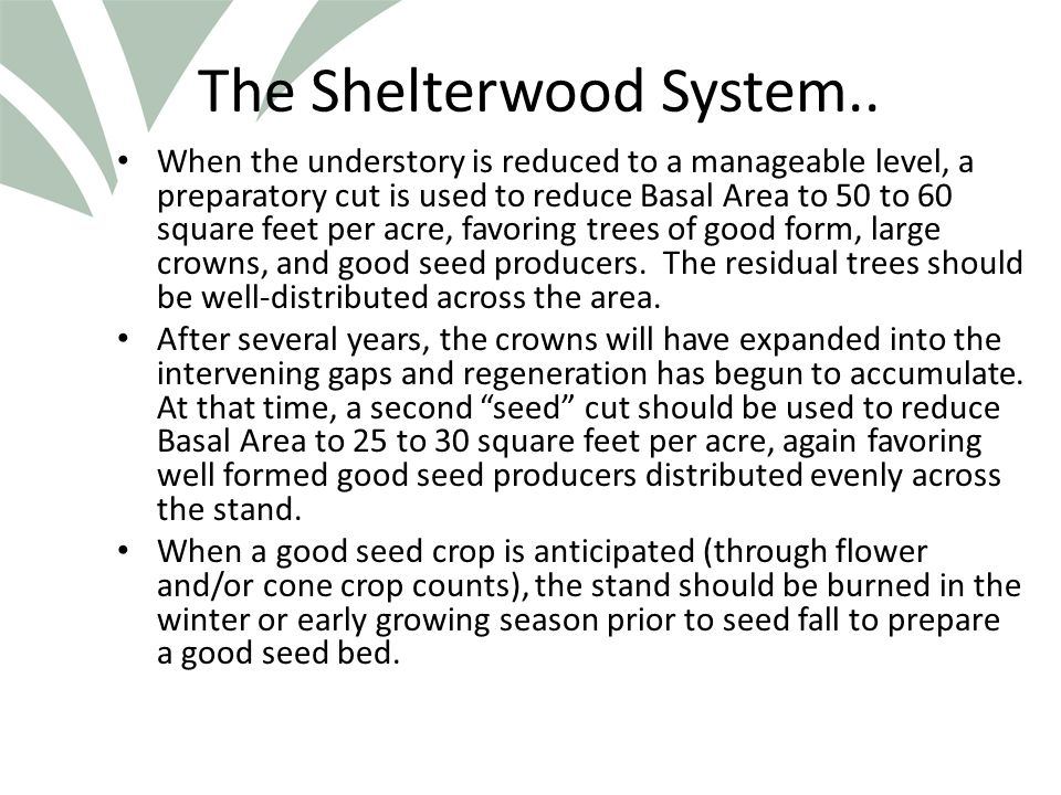 Click to edit Master title style The Shelterwood System..