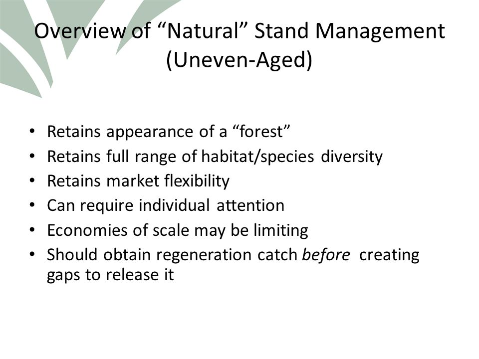 Click to edit Master title style Overview of Natural Stand Management (Uneven-Aged) Retains appearance of a forest Retains full range of habitat/species diversity Retains market flexibility Can require individual attention Economies of scale may be limiting Should obtain regeneration catch before creating gaps to release it