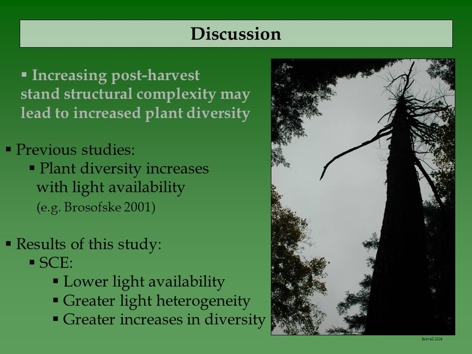 Discussion  Previous studies:  Plant diversity increases with light availability (e.g.