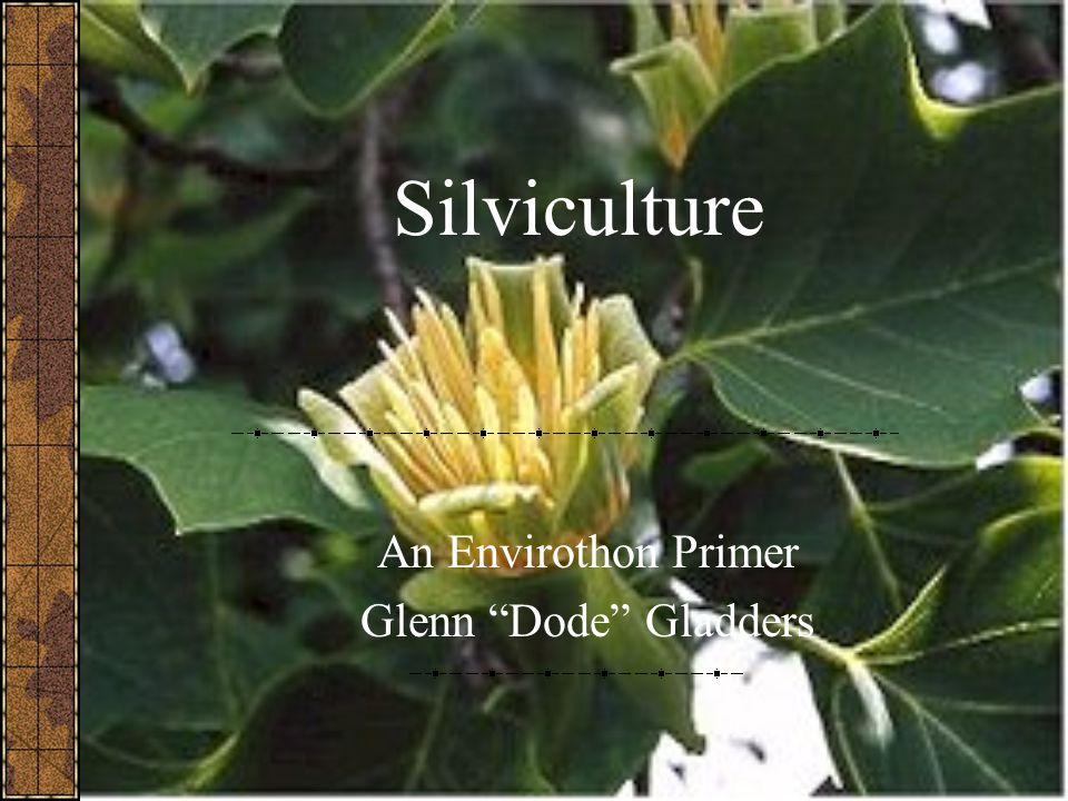 Silviculture An Envirothon Primer Glenn Dode Gladders