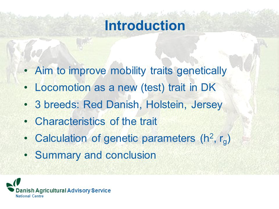 Danish Agricultural Advisory Service National Centre Introduction Aim to improve mobility traits genetically Locomotion as a new (test) trait in DK 3 breeds: Red Danish, Holstein, Jersey Characteristics of the trait Calculation of genetic parameters (h 2, r g ) Summary and conclusion