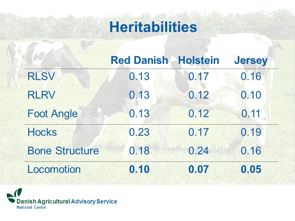 Danish Agricultural Advisory Service National Centre Heritabilities Red DanishHolsteinJersey RLSV0.130.170.16 RLRV0.130.120.10 Foot Angle0.130.120.11 Hocks0.230.170.19 Bone Structure0.180.240.16 Locomotion0.100.070.05