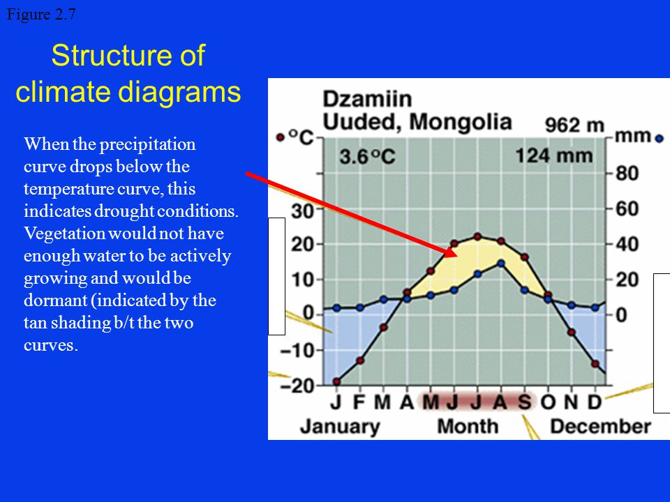 Structure of climate diagrams Figure 2.7 When the precipitation curve drops below the temperature curve, this indicates drought conditions. Vegetation