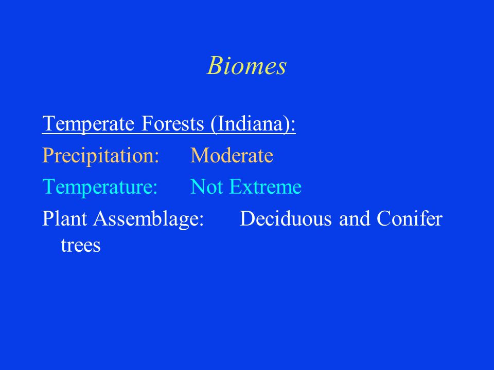 Biomes Temperate Forests (Indiana): Precipitation:Moderate Temperature:Not Extreme Plant Assemblage:Deciduous and Conifer trees