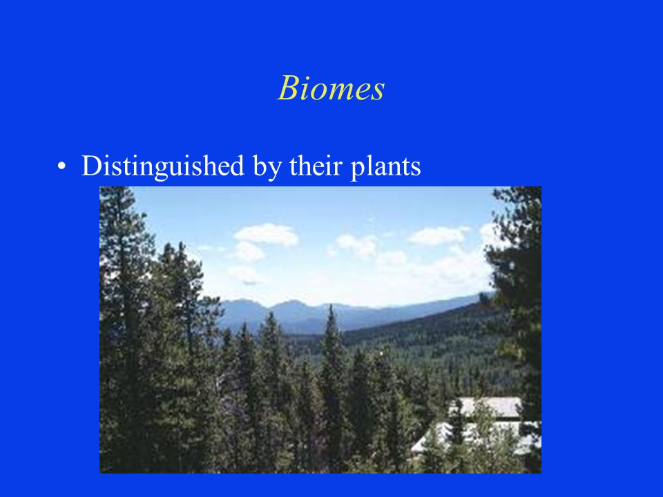 Biomes Distinguished by their plants