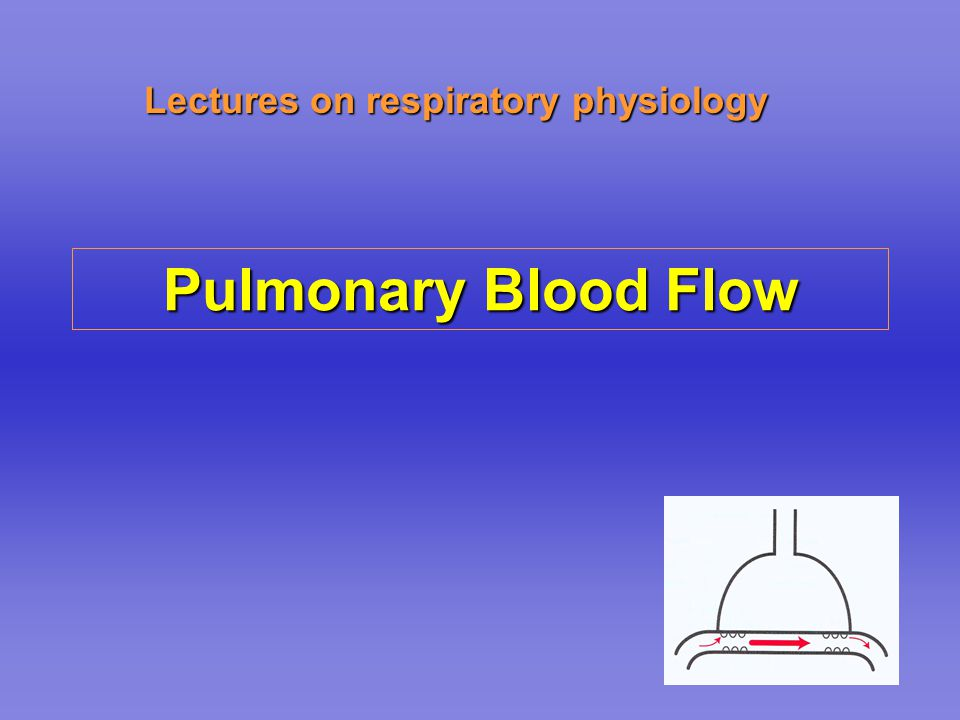 Lectures on respiratory physiology Pulmonary Blood Flow