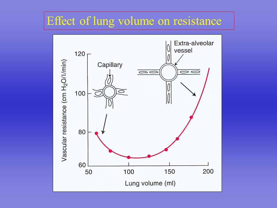 Effect of lung volume on resistance