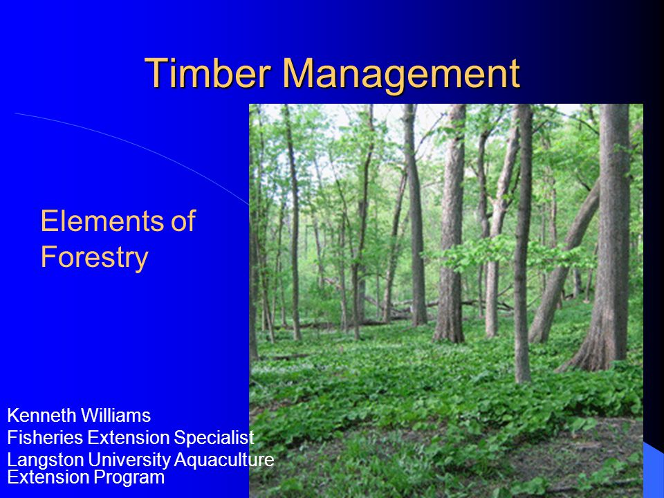 External Influences On Timber Management Markets – decisions based on future predictions of timber market prices.