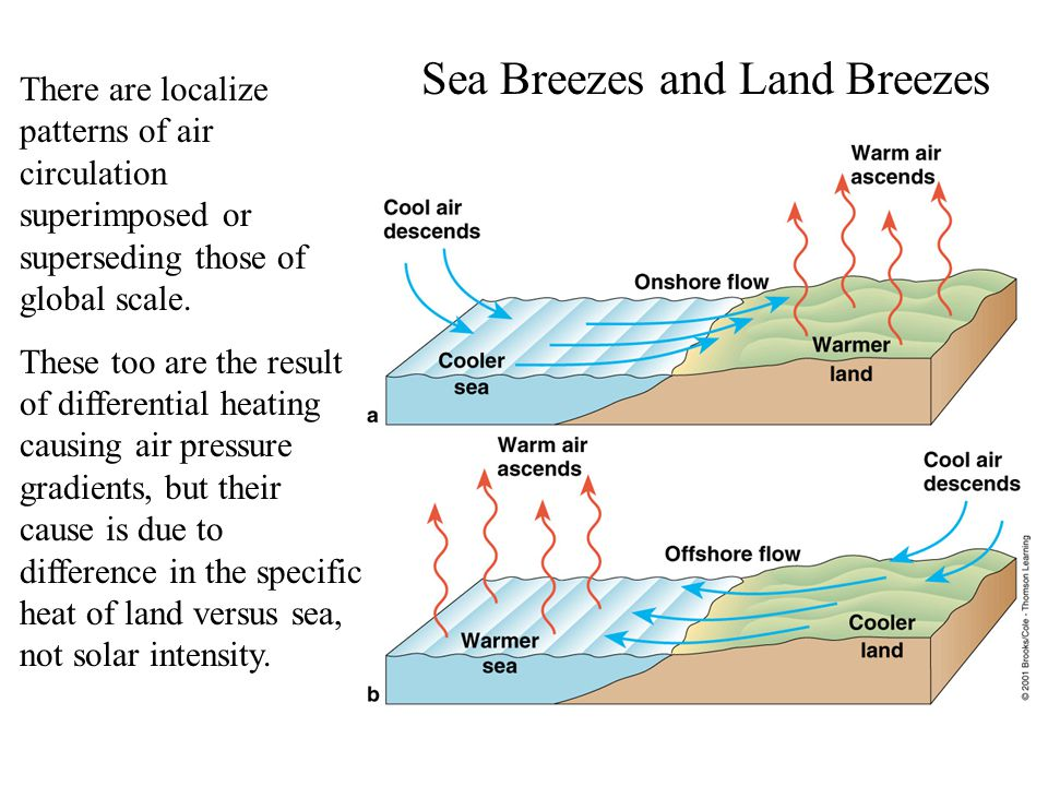 Sea Breezes and Land Breezes There are localize patterns of air circulation superimposed or superseding those of global scale.