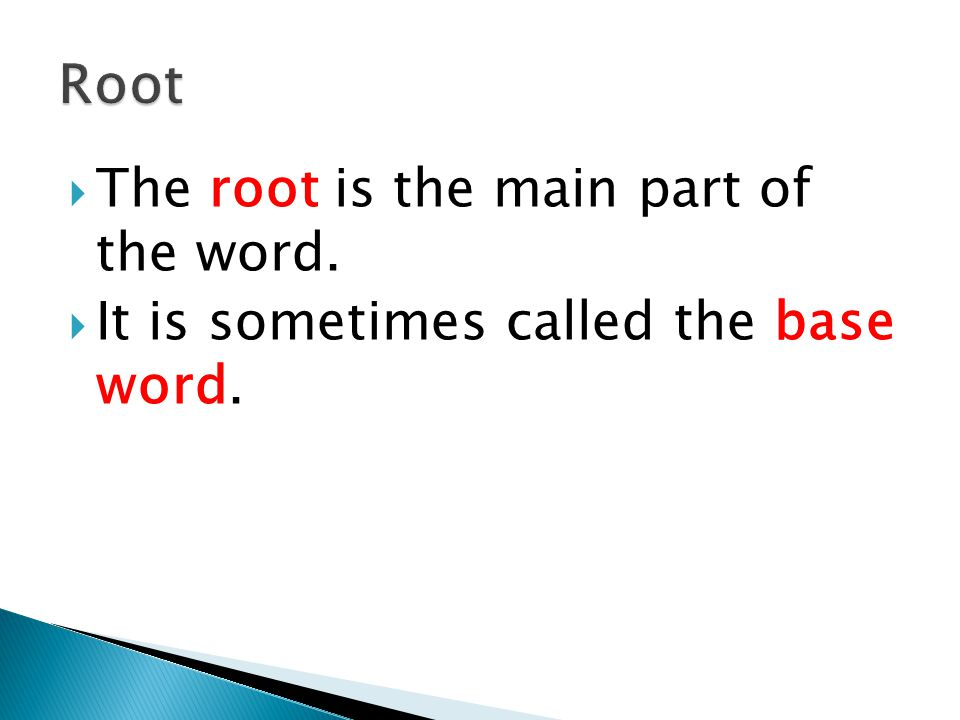 The root is the main part of the word.  It is sometimes called the base word.
