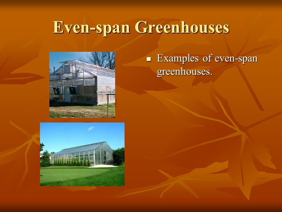 Even-span Greenhouses Usually clear-span.Usually clear-span.