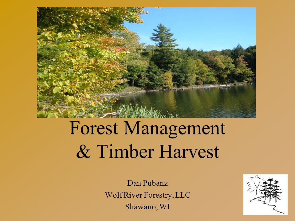Forest Management & Timber Harvest Dan Pubanz Wolf River Forestry, LLC Shawano, WI