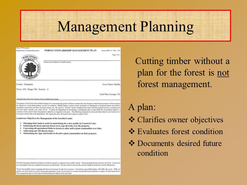 Focuses on proper resource management.