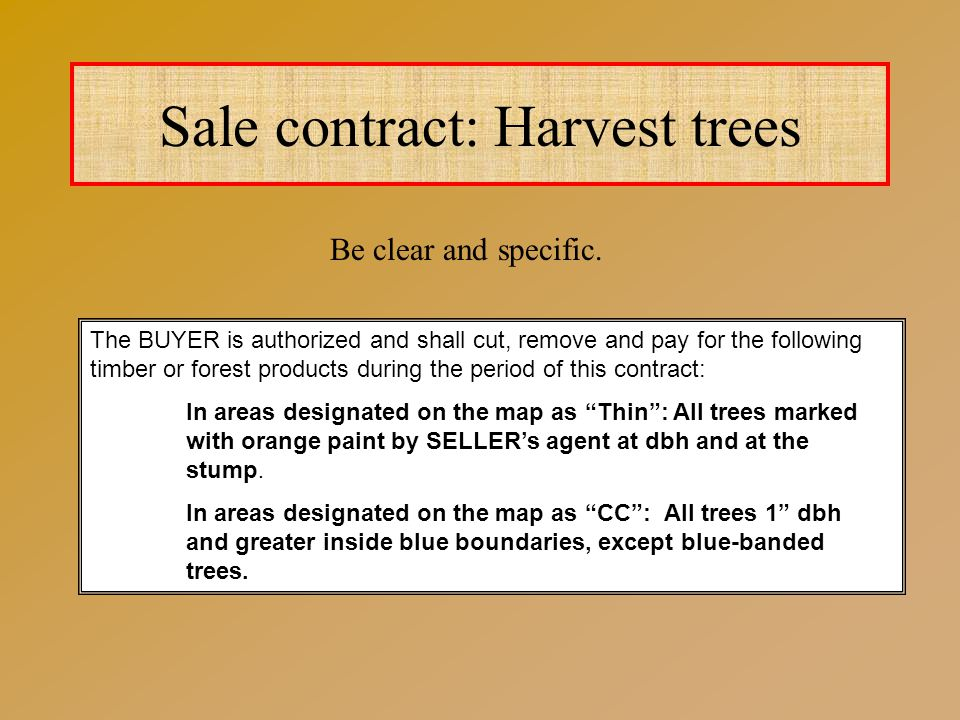 Sale contract: Harvest trees The BUYER is authorized and shall cut, remove and pay for the following timber or forest products during the period of this contract: In areas designated on the map as Thin : All trees marked with orange paint by SELLER's agent at dbh and at the stump.
