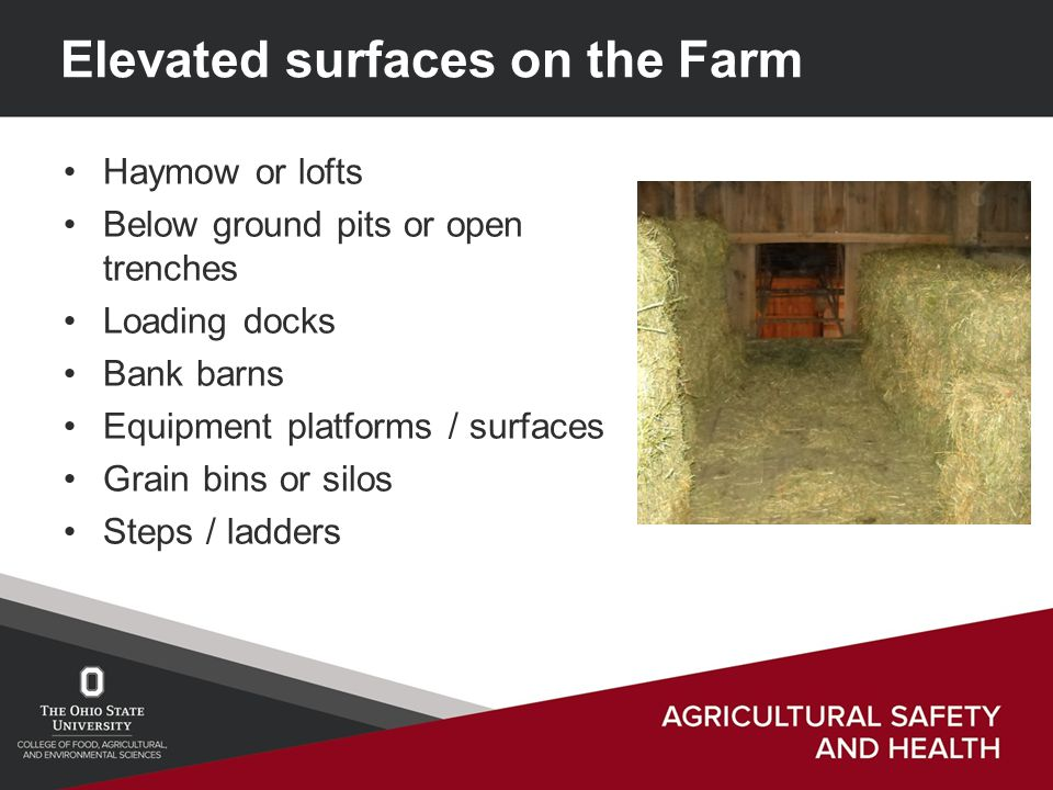 Elevated surfaces on the Farm Haymow or lofts Below ground pits or open trenches Loading docks Bank barns Equipment platforms / surfaces Grain bins or silos Steps / ladders