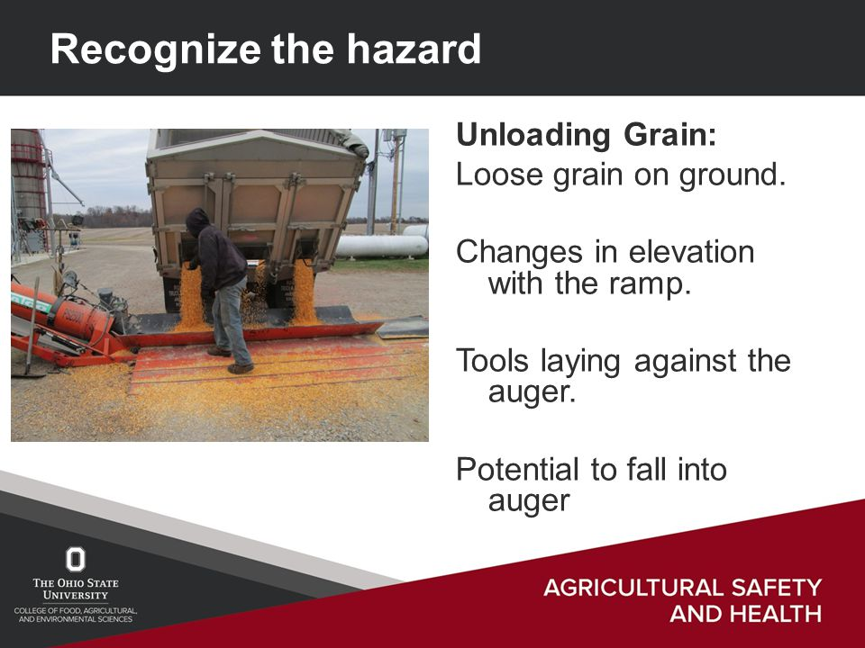 Unloading Grain: Loose grain on ground. Changes in elevation with the ramp.