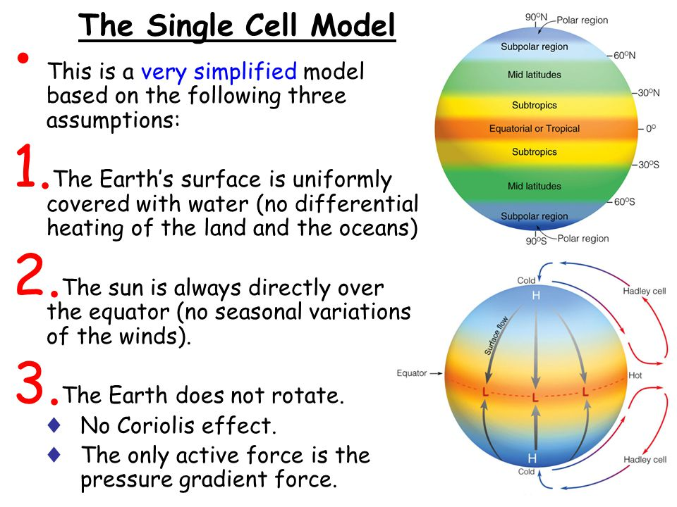 The Single Cell Model This is a very simplified model based on the following three assumptions: 1. The Earth's surface is uniformly covered with water
